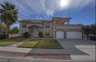 El Paso Single Family Home For Sale: 596 Pat Cruz
