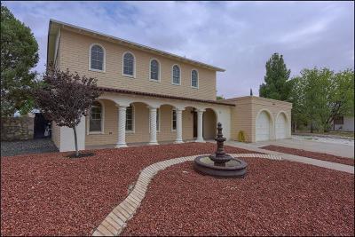 El Paso TX Single Family Home For Sale: $210,000