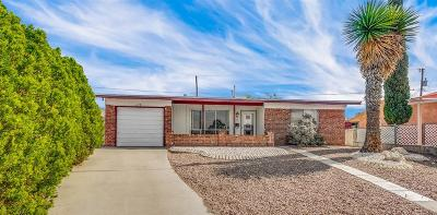 El Paso Single Family Home For Sale: 273 Three Rivers Drive