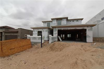 El Paso Single Family Home For Sale: 1255 Desert Mirage Place