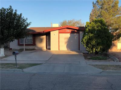 Single Family Home For Sale: 1764 Marlys Larson Street
