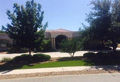 El Paso Single Family Home For Sale: 330 Wild Willow Drive