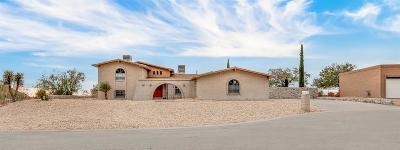Single Family Home For Sale: 329 Vista Del Rey Drive