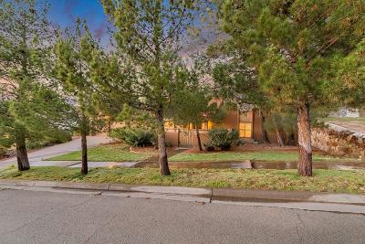 Single Family Home For Sale: 6109 Via Aventura Drive