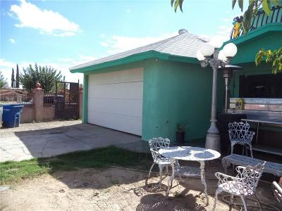 Socorro Single Family Home For Sale: 9862 Lilly Drive