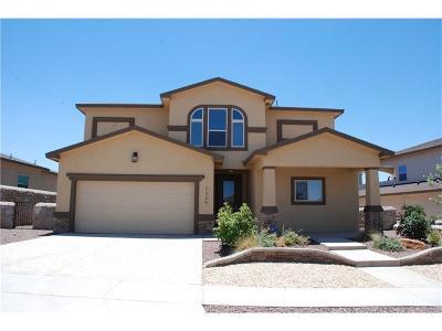Single Family Home For Sale: 7324 Kiowa Creek Drive