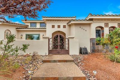 El Paso Single Family Home For Sale: 6144 Laguna Vista Drive