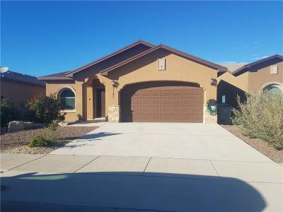 Single Family Home For Sale: 7121 Skies Lane