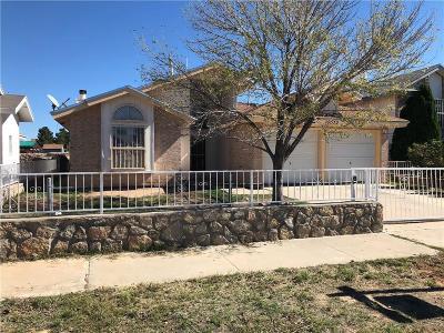 Single Family Home For Sale: 10652 Obsidian Street