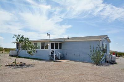 Single Family Home For Sale: 17540 Hueco Mountain Rd