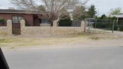 Socorro Single Family Home For Sale: 782 Lupe Anna Lane