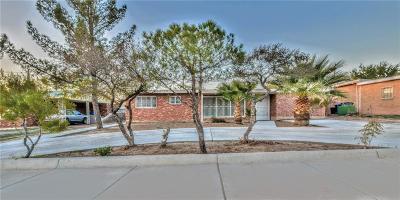 Single Family Home For Sale: 609 Alethea Park Drive