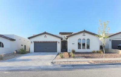 Single Family Home For Sale: 12267 Houghton Springs