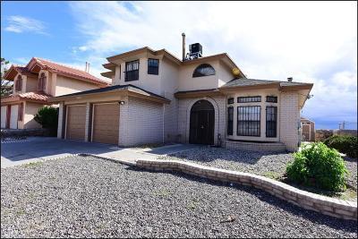 Single Family Home For Sale: 1432 Rebecca Ann Drive