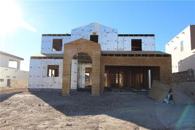 El Paso Single Family Home For Sale: 1255 Hidden Desert Lane