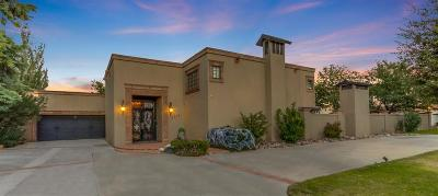 El Paso Single Family Home For Sale: 4718 Rosinante Road