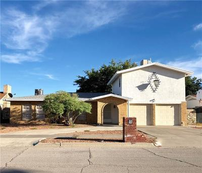 El Paso Single Family Home For Sale: 3116 Fierro Drive