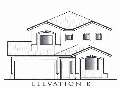Single Family Home For Sale: 117 Manzanita Drive