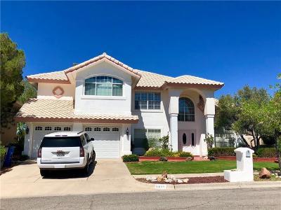 El Paso Single Family Home For Sale: 5933 Via Cuesta Drive