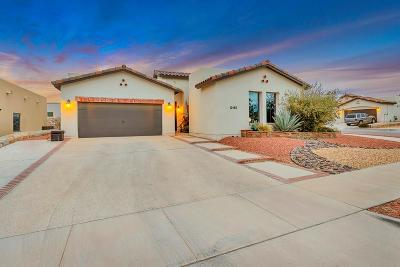 Horizon City Single Family Home For Sale: 12165 Dome Court