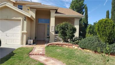 El Paso Single Family Home For Sale: 6129 Daybreak Drive