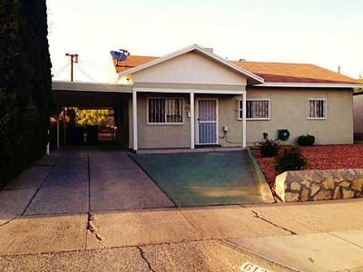 El Paso Single Family Home For Sale: 6131 Taos Drive