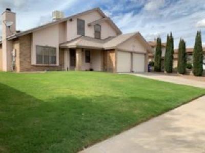 Single Family Home For Sale: 10105 Cisco Lane