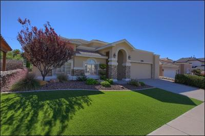 Single Family Home For Sale: 6088 Los Pueblos Drive