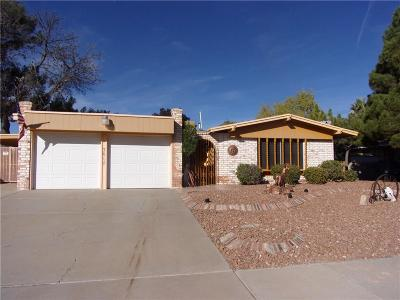 Single Family Home For Sale: 3017 Gaston Drive