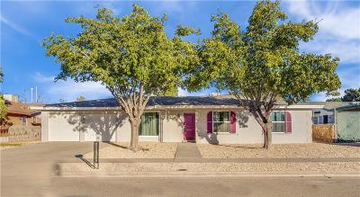 El Paso Single Family Home For Sale: 11260 Ivanhoe Drive