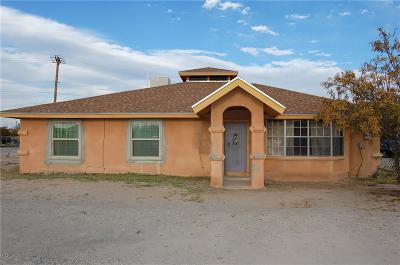 San Elizario Single Family Home For Sale: 13201 Geranio