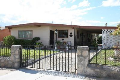 El Paso Single Family Home For Sale: 6204 Ute Lane