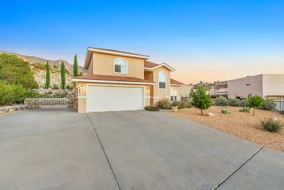 El Paso Single Family Home For Sale: 5851 Lawndale Drive