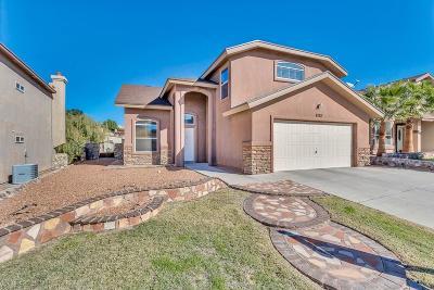 El Paso Single Family Home For Sale: 6725 Parque Del Sol