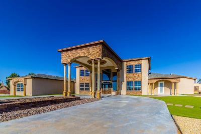 Single Family Home For Sale: 14071 Desert Willow Drive