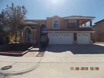 Horizon City Single Family Home For Sale: 13406 Emerald Seas Way