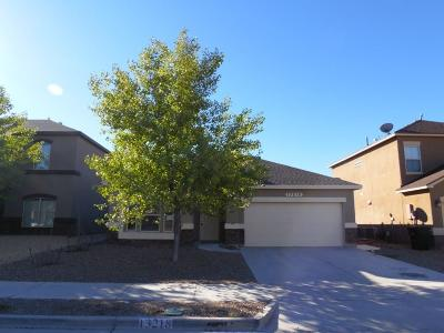 Horizon City Single Family Home For Sale: 13218 Bywell
