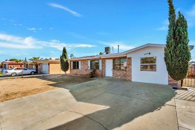 El Paso Single Family Home For Sale: 8564 San Miguel Drive