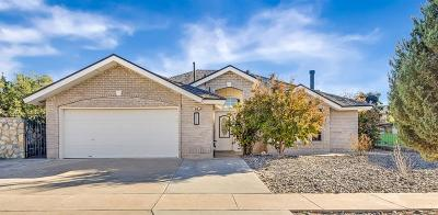 Single Family Home For Sale: 14012 Desert Lily Place