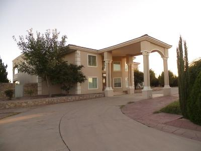 El Paso Single Family Home For Sale: 800 Wild Sage Court