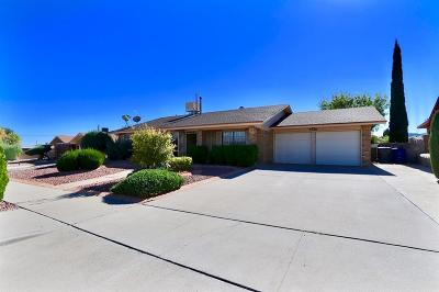 Single Family Home For Sale: 9486 E B Taulbee Drive