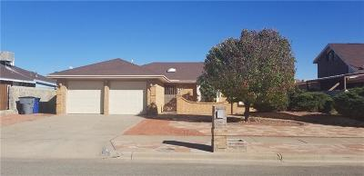 El Paso TX Single Family Home For Sale: $143,000