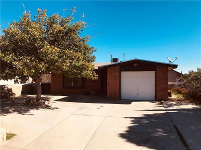 Single Family Home For Sale: 11876 Jim Ferriell Drive