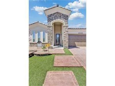 El Paso Single Family Home For Sale: 2155 Enchanted Brook