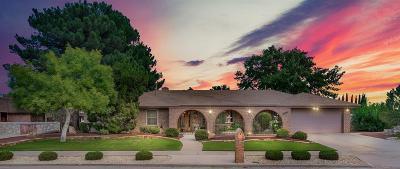 El Paso Single Family Home For Sale: 11191 Leo Collins Drive