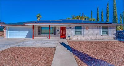 El Paso Single Family Home For Sale: 10617 Candlewood Avenue