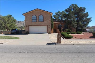 El Paso Single Family Home For Sale: 6100 Pino Real Drive