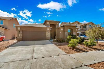 El Paso Single Family Home For Sale: 14632 Alton Oaks Avenue