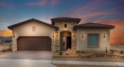 El Paso Single Family Home For Sale: 14916 Hunters Grove