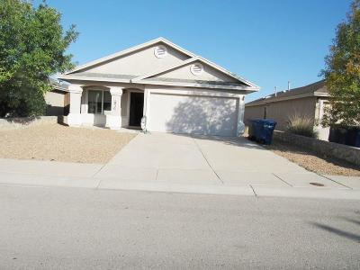 Horizon City Single Family Home For Sale: 1830 Shreya Street